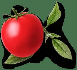 mamanjoun-tomato-min